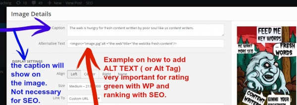 how to add alt text to image in pdf