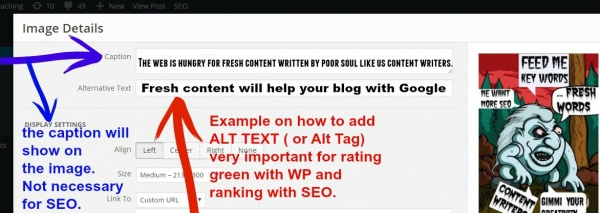 How to write alt text for seo