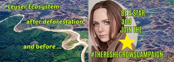 Stella McCartney Leuser Ecosystem