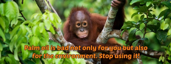 palm oil is bad stop using palm oil